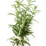 tied twigs of rosemary